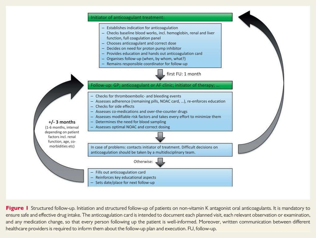 Figure 1 Structured follow-up. Initiation and structured follow-up of patients on non-vitamin K antagonist oral