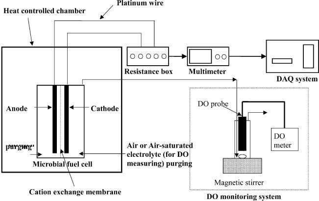 / Biosensors and Bioelectronics 18 (2003) 327 / 334 329 Fig. 2. Schematic diagram of the