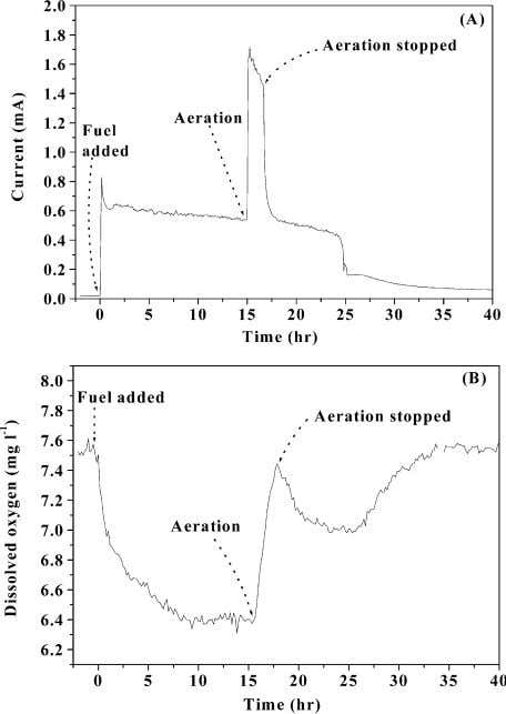 through the continuous flow of the buffer solution. Fig. 10. The effects of aeration into the