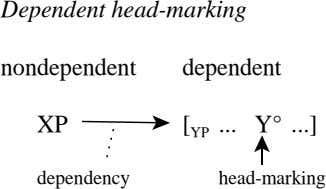 Dependent head-marking nondependent dependent XP Y° ] [ YP dependency head-marking