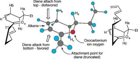 The formed product involves attack syn to the ethyl group. Figure 1. AM1 optimized model reactant