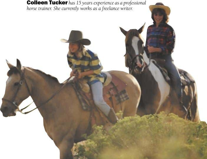 Colleen Tucker has 15 years experience as a professional horse trainer. She currently works as