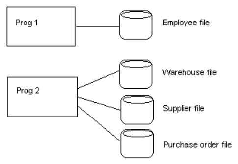 within an organization typically has its own set of files.  Files are often designed specifically