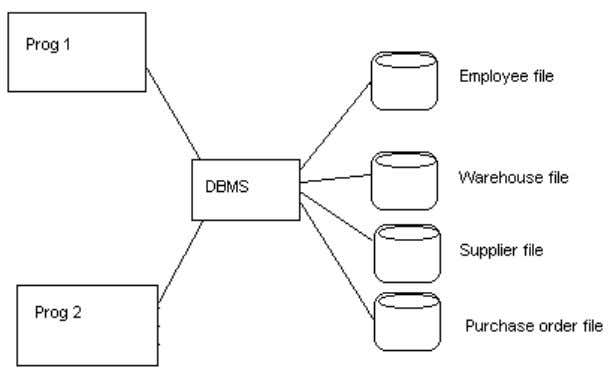 using software called a Database Management System (DBMS). The focus is on the data and not