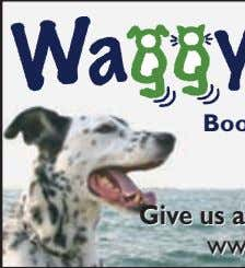 WHERE THE WAGGING NEVER STOPS! Cage Free Dog Boarding New customers only. Limited to one